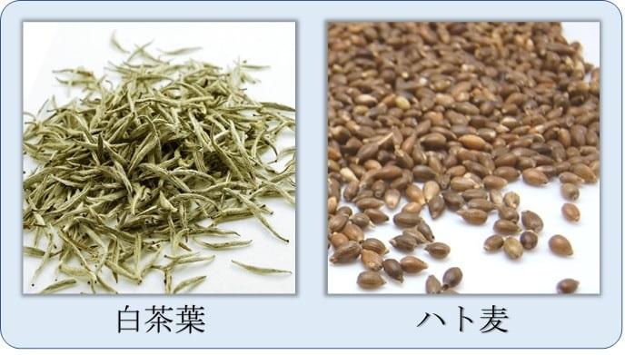 白茶葉とハト麦