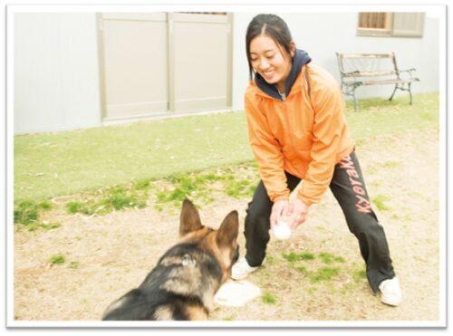 蔵ヒロミとシェパード犬